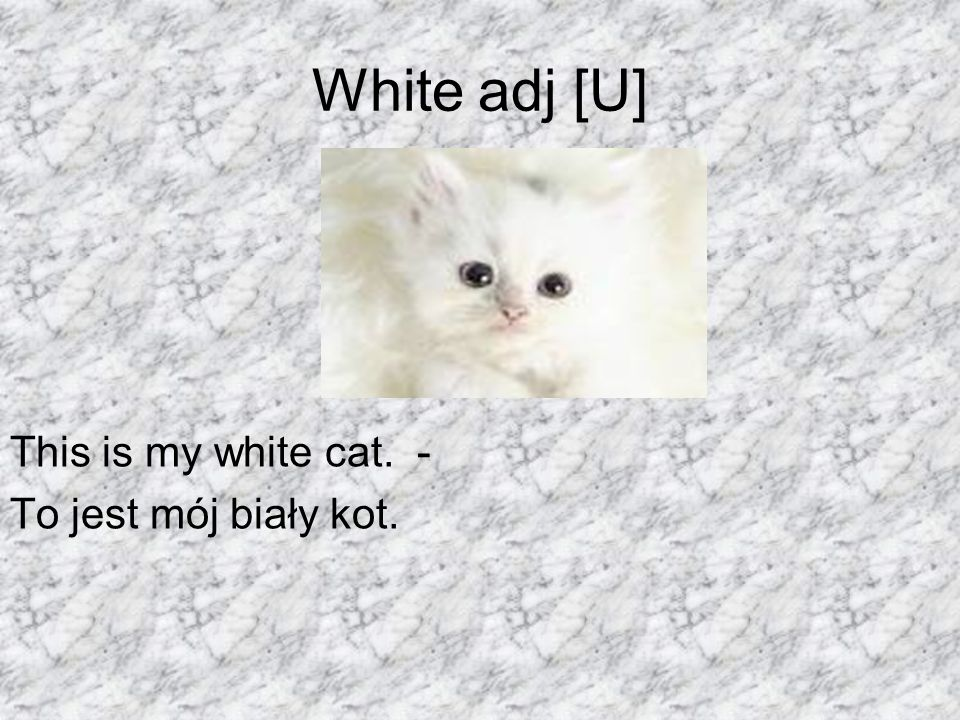 White adj [U] This is my white cat. - To jest mój biały kot.